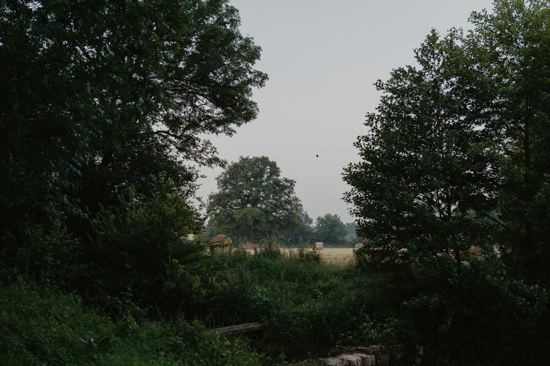 aloreedesfees-lavieenmazes (4)